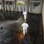 Cleaning of cargo holds